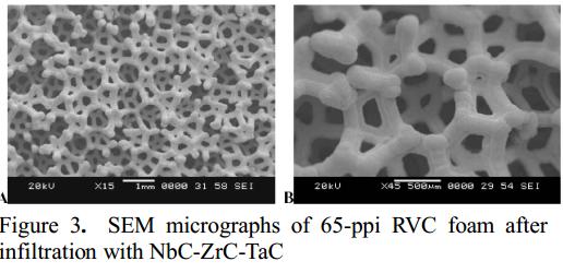65 ppi RVC foam tricarbide, Youchistan et al
